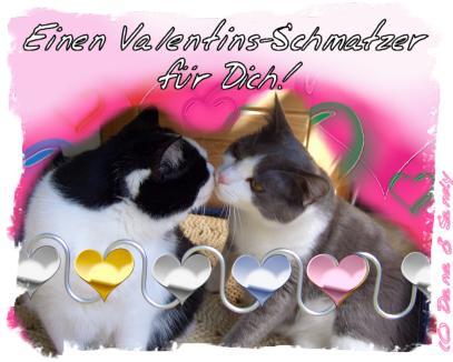 Einen Valentins-Schmatzer für Dich!